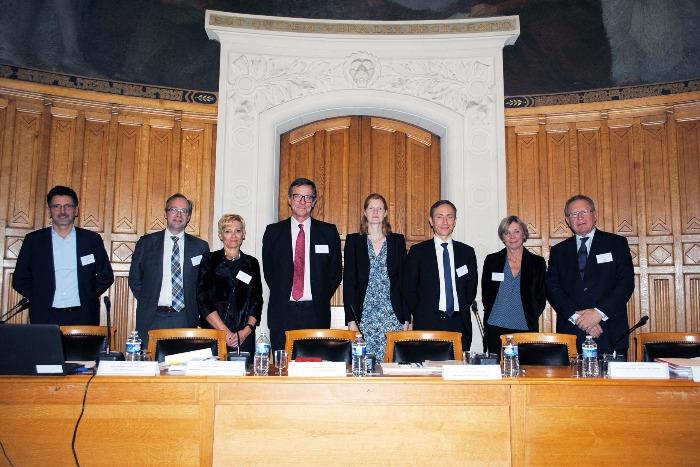 H. Pierson, G. Boulan, C. Pillet, M. Bosqué, L. Mayer, O. Flament, I. Schmelck, PL. Netter